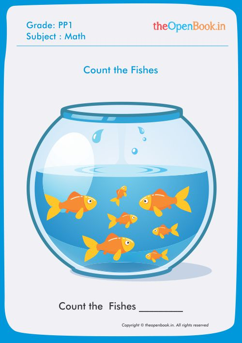 Count the Fishes